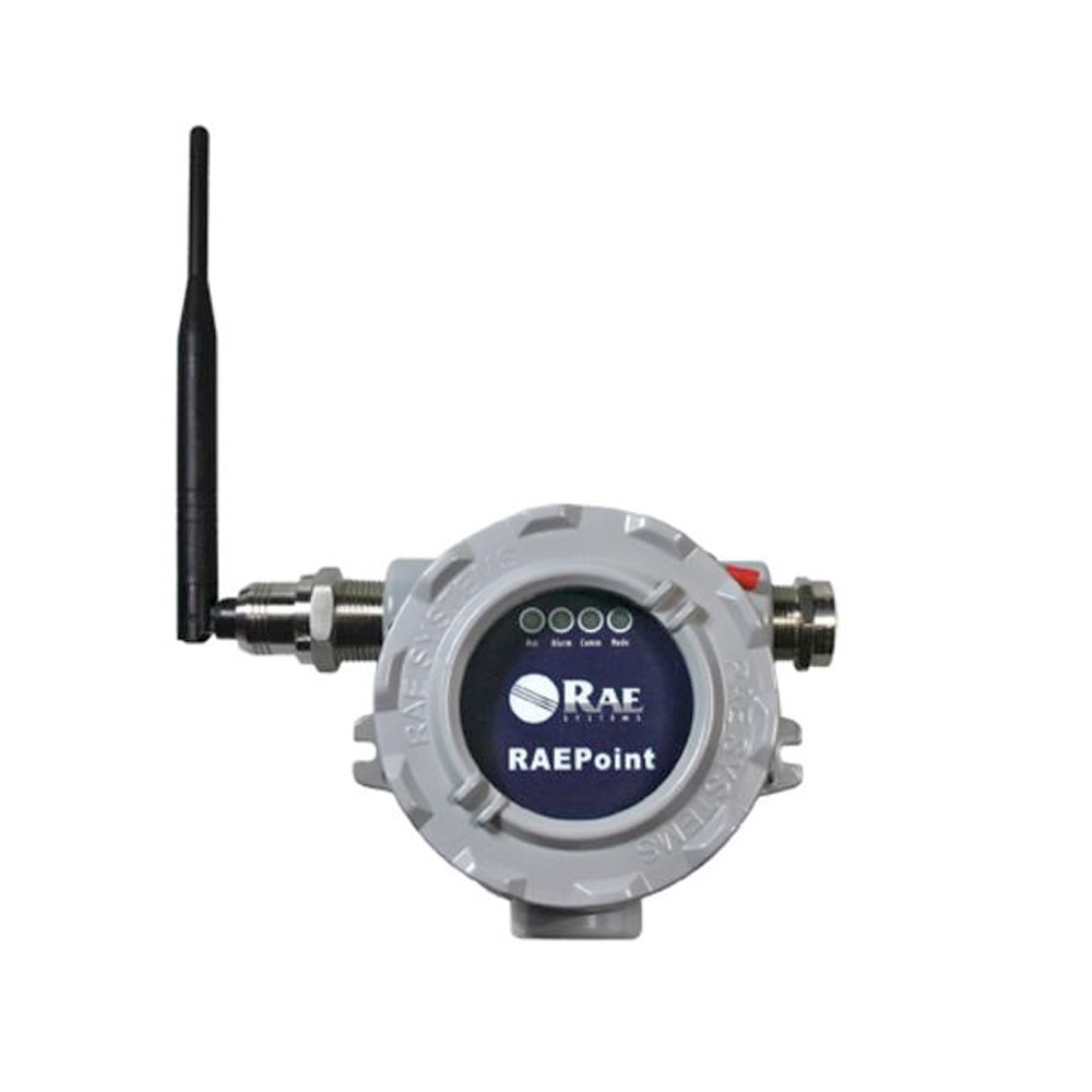 RAEPoint Device