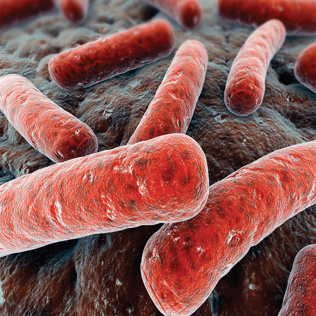 Microbial Air Monitors